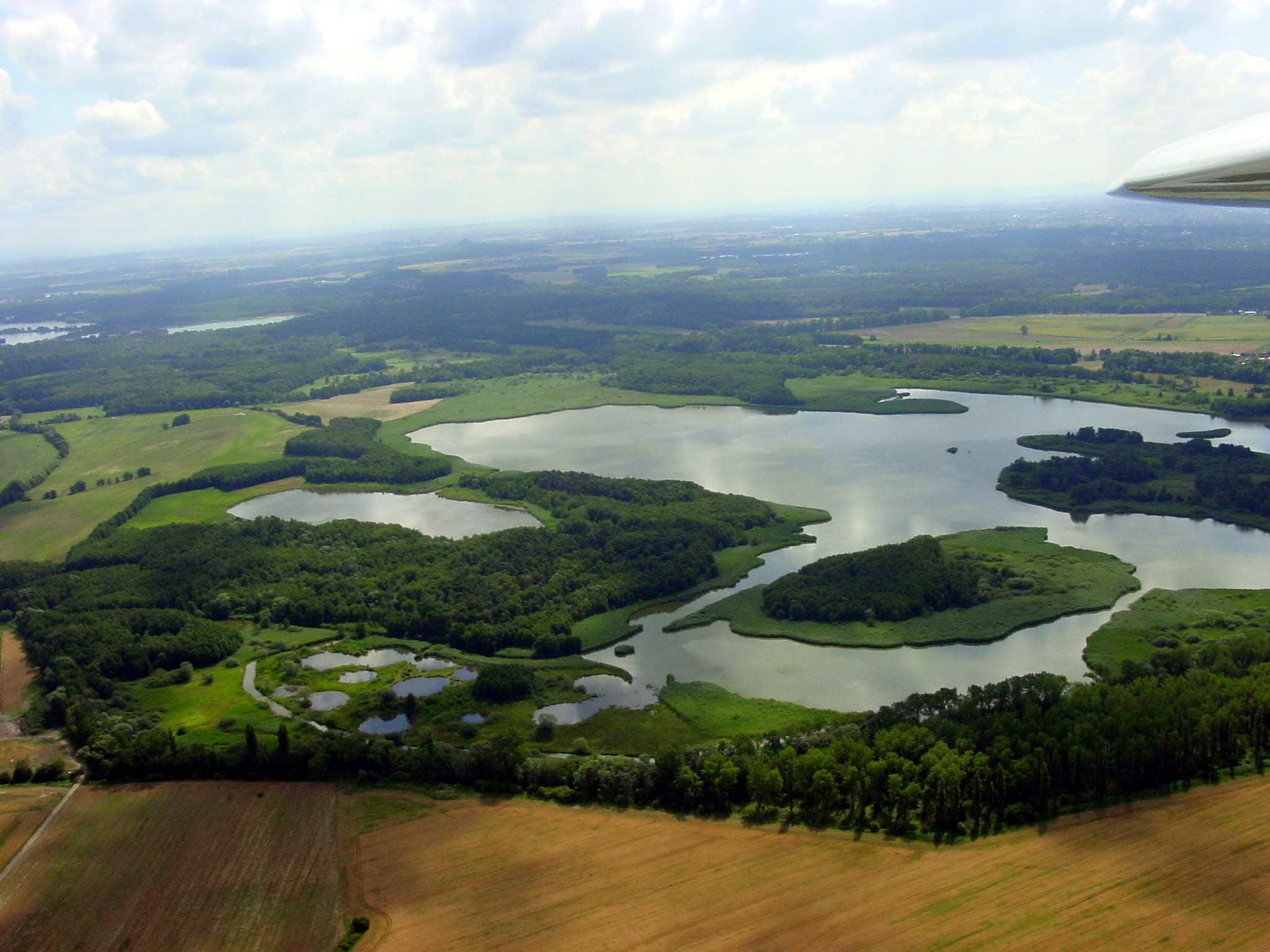 Národní přírodní rezervace Bohdanečský rybník a rybník Matka